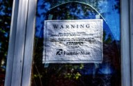 They Might Be Mortgage Giants: Fannie & Freddie's Tax Breaks